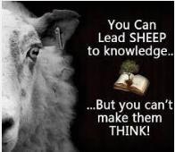 You can lead sheep to knowledge joke photo