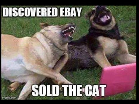 discovered ebay funny photo