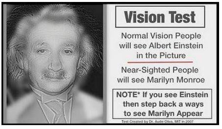 einstein vision test cool or weird photo