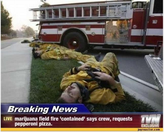 firefighters need pizza funny photo