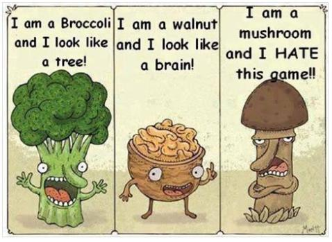 im a mushroom and I don't like this game funny photo