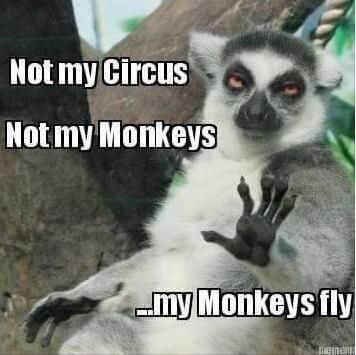 not my monkeys funny photo