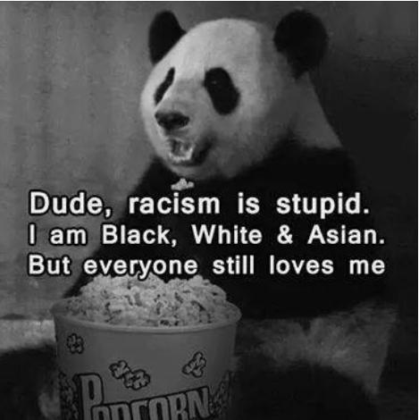 racism is stupid i'm black white and asian funny photo
