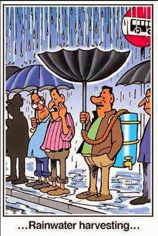 rainwater harvesting funny photo