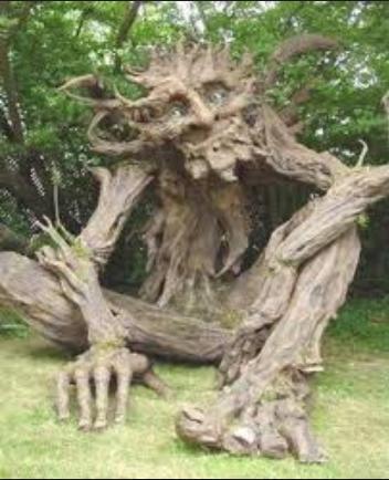 scary weird tree weird photo