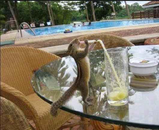 Sooo thirsty!