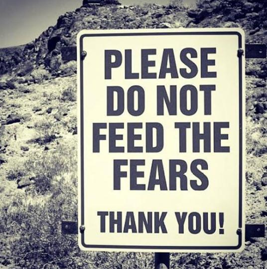 please do not feed the fears cool photo