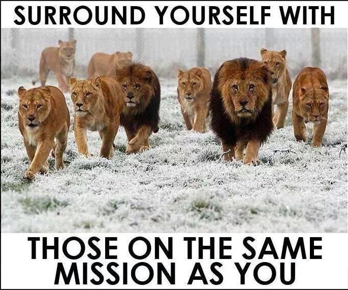 surround yourself with those on the same mission as you cool photo
