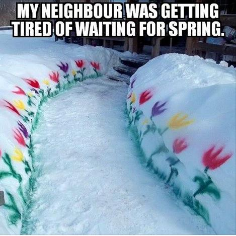 tired of waiting for spring cool or funny photo