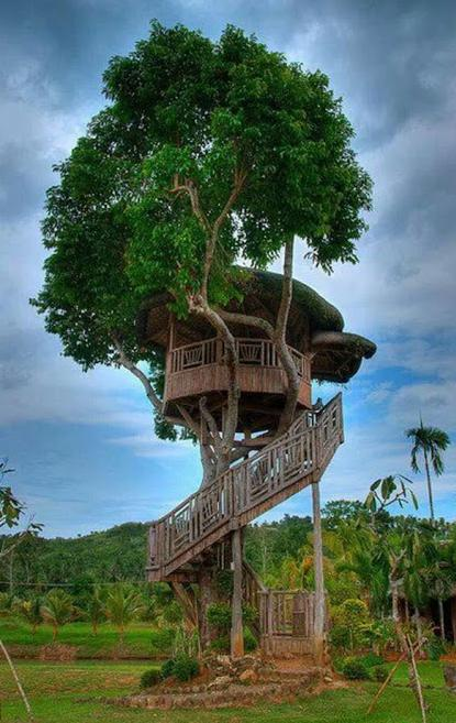 treehouse with spiral staircase cool photo