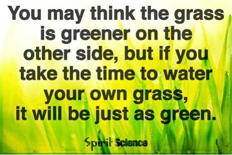 water your grass it will be just as green cool or truth photo