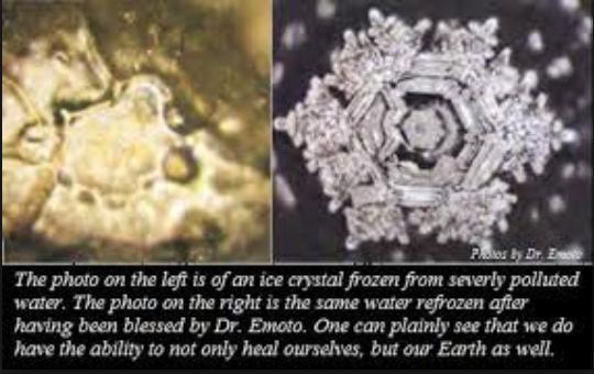 Emotos water comparison photo