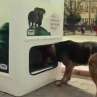dog food recycling bin photo