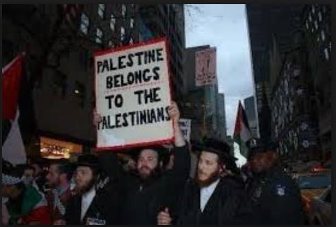 jew says palestine belongs to the palestinians truth photo
