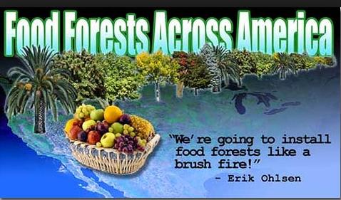 food forests across america photo