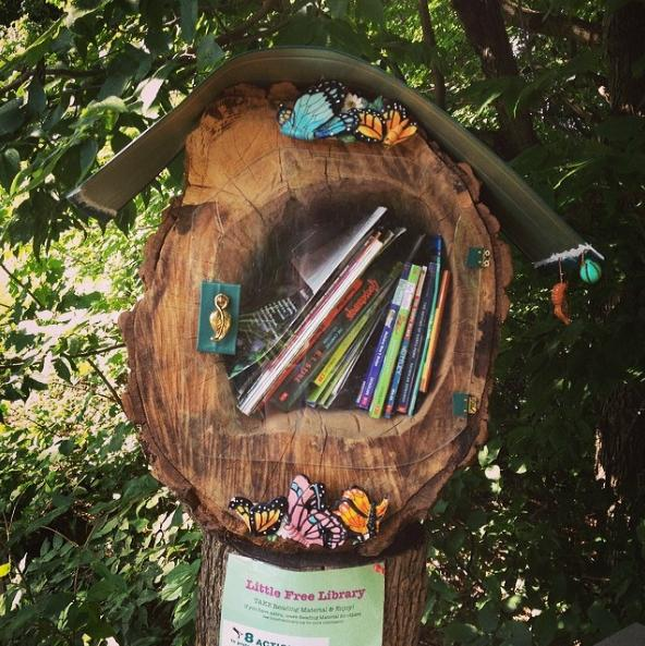 little free library 1 photo