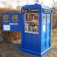 little free library 2 photo